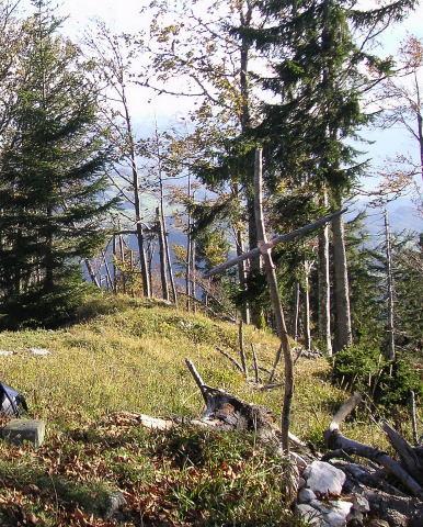 Foto: Wolfgang Lauschensky / Mountainbiketour / Schwarzenberg  1334m / Gipfelsymbol für einen wenig besuchten Berg / 17.12.2011 13:23:41