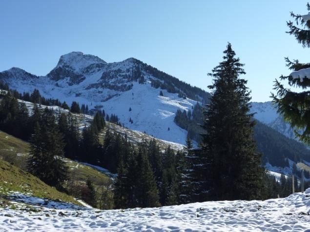 Foto: Manfred Karl / Wandertour / Gaisberg vom Wildpark Aurach / 04.11.2015 19:37:34
