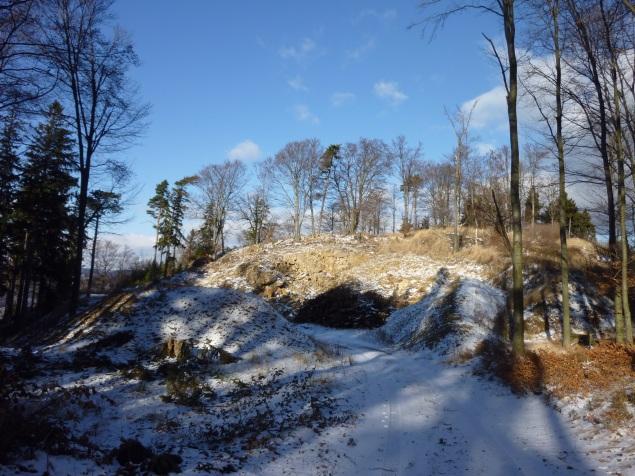 Foto: Manfred Karl / Wandertour / Rundtour Friedrichfelsen - Hoher Stein – Rote Wand / 28.01.2012 12:13:15