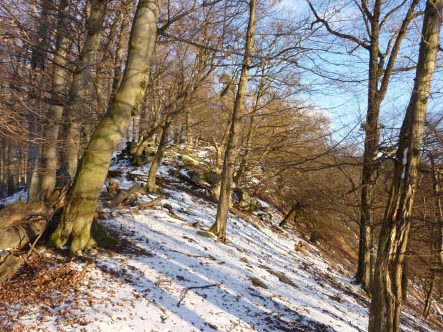 Foto: Manfred Karl / Wandertour / Rundtour Friedrichfelsen - Hoher Stein – Rote Wand / Hochreutkamm / 28.01.2012 11:59:04
