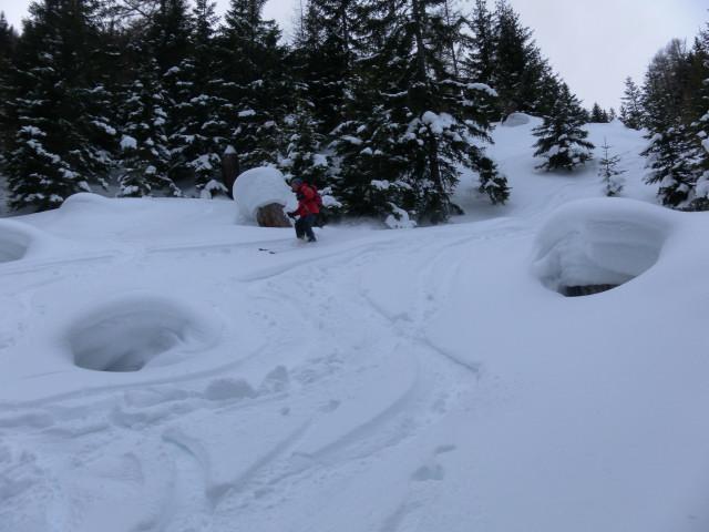 Foto: Wolfgang Lauschensky / Skitour / Lackenspitze 2459m / Waldabfahrt / 01.02.2012 17:04:24