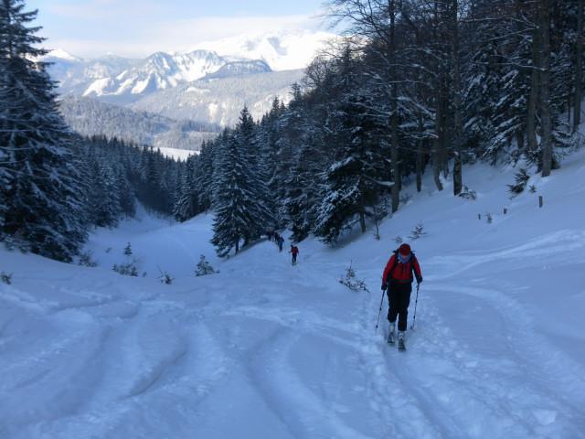 Foto: Wolfgang Lauschensky / Skitour / Scheiblingstein 2197m (hohe Variante aus dem Pyhrgasgatterl) / Anstieg zum Pyhrgasgatterl / 23.02.2012 14:56:08
