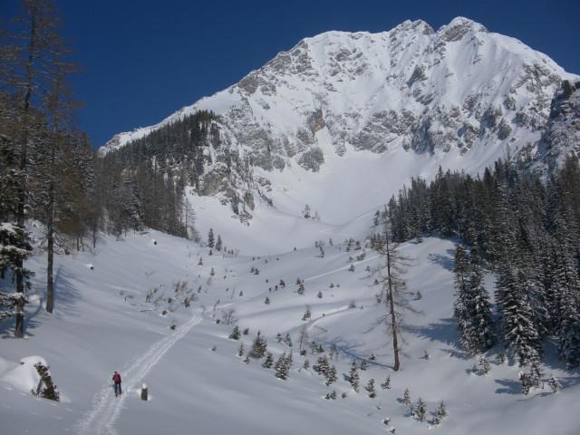 Foto: Wolfgang Lauschensky / Skitour / Scheiblingstein 2197m (hohe Variante aus dem Pyhrgasgatterl) / Südkar des Pyhrgas / 23.02.2012 14:55:56