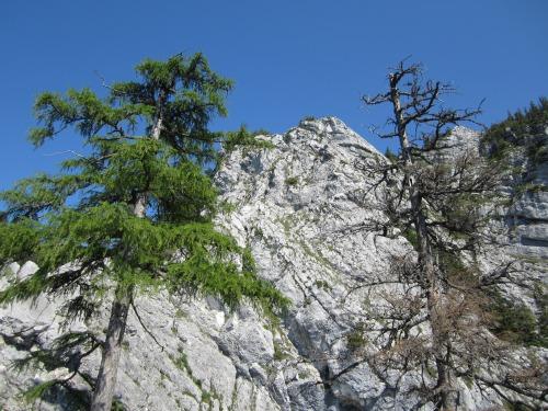 """Foto: hofchri / Klettersteigtour / Mahdlgupf (1.261 m) über """"Attersee-Klettersteig"""" / Blick zum oberen Zackengrat / 26.06.2012 21:36:32"""