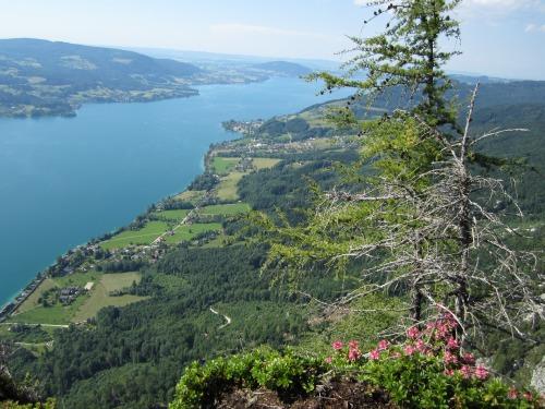 """Foto: hofchri / Klettersteigtour / Mahdlgupf (1.261 m) über """"Attersee-Klettersteig"""" / Atterseepanorama / 26.06.2012 21:36:55"""