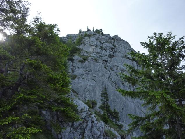 """Foto: Manfred Karl / Klettersteigtour / Mahdlgupf (1.261 m) über """"Attersee-Klettersteig"""" / Gipfelwand / 03.06.2012 15:09:34"""