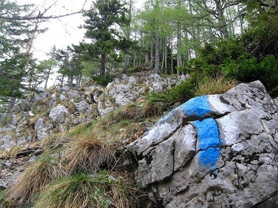 Foto: Andreas Koller / Klettertour / Nandlgrat auf das Schneebergplateau (1974m) / 21.05.2012 23:27:13