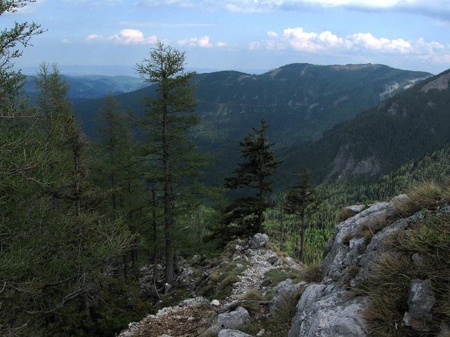 Foto: Andreas Koller / Klettertour / Nandlgrat auf das Schneebergplateau (1974m) / 21.05.2012 23:26:24