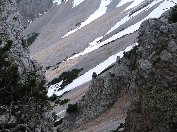 Foto: Andreas Koller / Klettertour / Nandlgrat auf das Schneebergplateau (1974m) / 21.05.2012 23:24:15