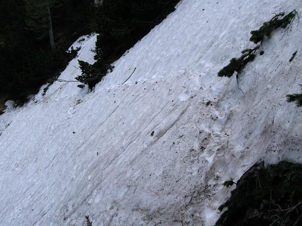 Foto: Andreas Koller / Klettertour / Nandlgrat auf das Schneebergplateau (1974m) / 21.05.2012 23:22:32