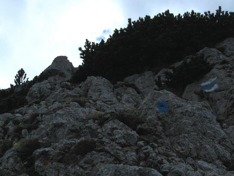 Foto: Andreas Koller / Klettertour / Nandlgrat auf das Schneebergplateau (1974m) / 21.05.2012 23:21:24