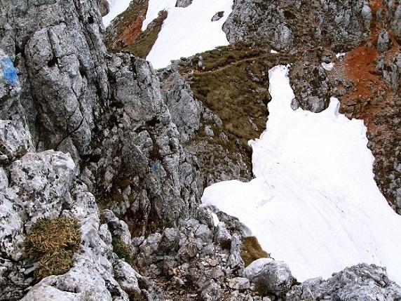 Foto: Andreas Koller / Klettertour / Nandlgrat auf das Schneebergplateau (1974m) / 21.05.2012 23:17:51