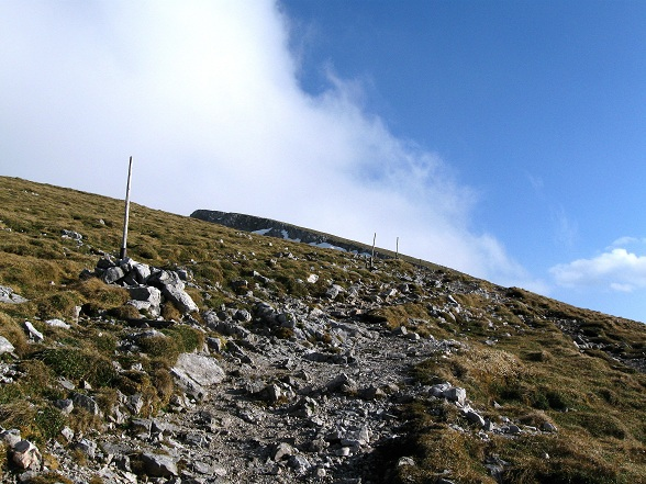 Foto: Andreas Koller / Klettertour / Nandlgrat auf das Schneebergplateau (1974m) / 21.05.2012 23:08:31