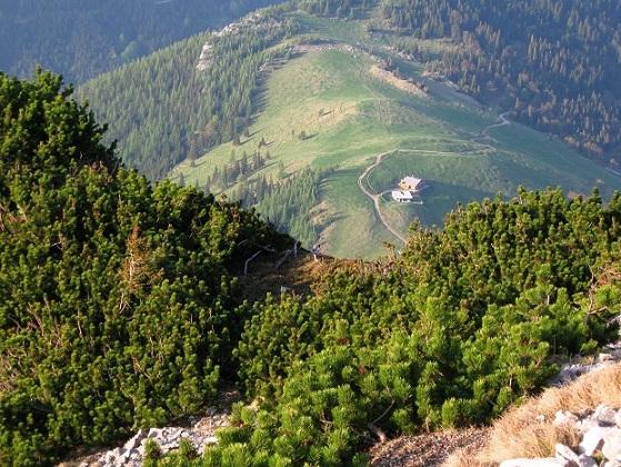 Foto: Andreas Koller / Klettertour / Nandlgrat auf das Schneebergplateau (1974m) / 21.05.2012 23:05:43