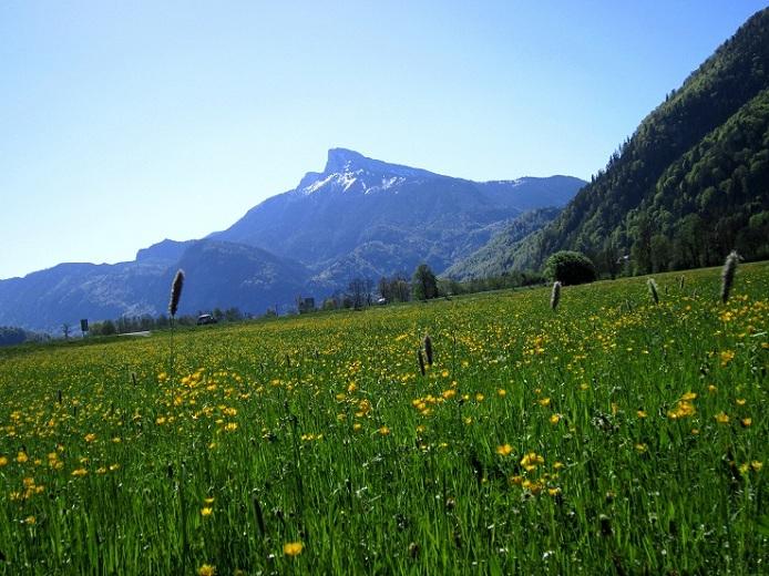 Klettersteig Mondsee : Fotogalerie tourfotos fotos zur klettersteig tour drachenwand