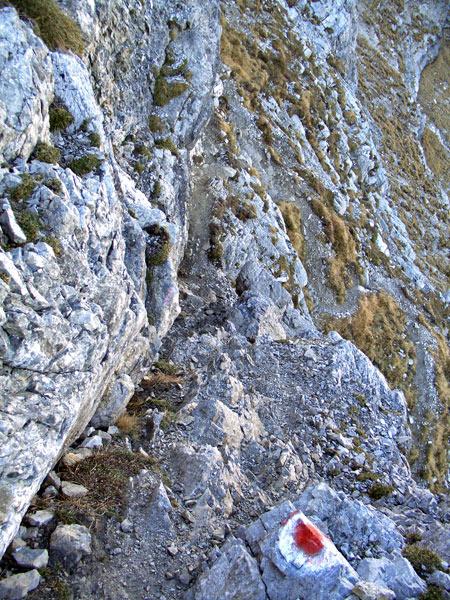Foto: vince 51 / Wandertour / Reuttener Höhenweg / Aufstieg zur Knittelkarspitze / 11.07.2012 22:07:30