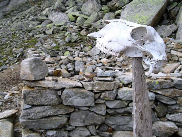 Foto: Andreas Koller / Wandertour / Goldbergspitze aus dem Großen Zirknitztal (3073m) / 22.09.2012 01:48:48