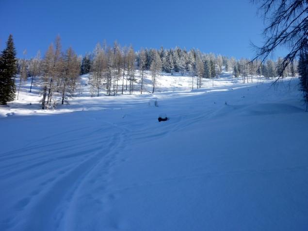 Foto: Manfred Karl / Skitour / Hinteres Labeneck, 1986 m / Am Beginn der freien Hänge / 15.02.2013 21:18:36