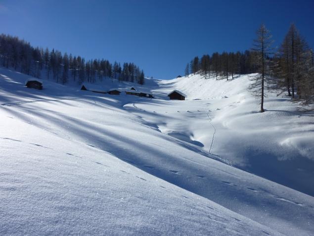Foto: Manfred Karl / Skitour / Hinteres Labeneck, 1986 m / Durch die Mulde hinter den Labeneckalmhütten verläuft der weitere Anstieg / 15.02.2013 21:18:04