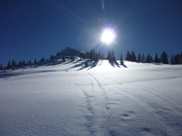 Foto: Manfred Karl / Skitour / Hinteres Labeneck, 1986 m / 15.02.2013 21:17:04