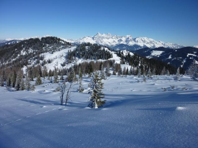 Foto: Manfred Karl / Skitour / Hinteres Labeneck, 1986 m / Dachsteinmassiv / 15.02.2013 21:16:55