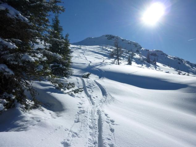 Foto: Manfred Karl / Skitour / Hinteres Labeneck, 1986 m / Abfahrt vom Htr. Labeneck / 15.02.2013 21:14:47