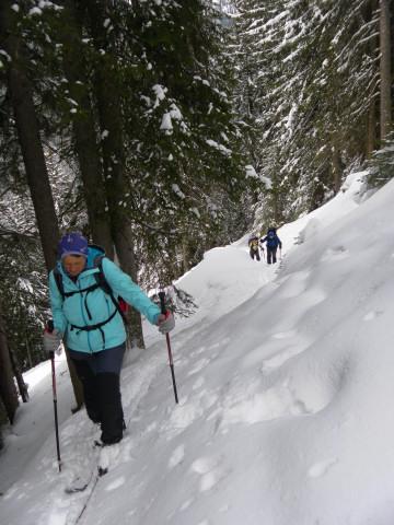 Foto: Wolfgang Lauschensky / Skitour / Mislkopf über Mislböden    / steiler Waldanstieg / 19.02.2013 18:01:55