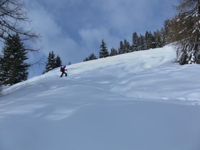 Foto: Wolfgang Lauschensky / Skitour / Mislkopf über Mislböden    / erste freie Flächen / 19.02.2013 18:01:45