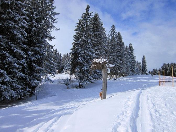 Foto: Andreas Koller / Skitour / Lawinensicher aufs Rangger Köpfl (1939m) / 22.02.2013 22:13:29