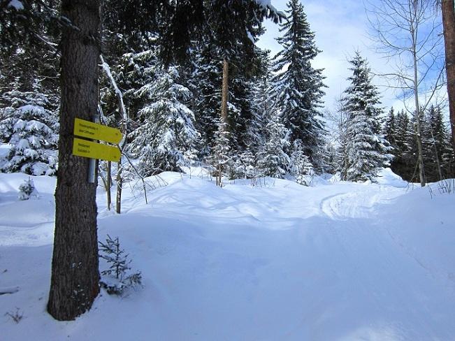Foto: Andreas Koller / Skitour / Lawinensicher aufs Rangger Köpfl (1939m) / 22.02.2013 22:13:13