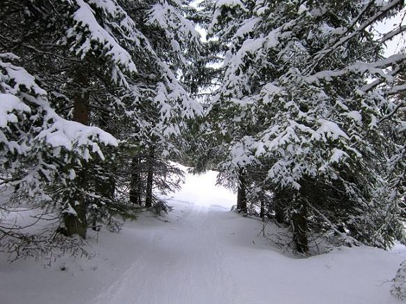 Foto: Andreas Koller / Skitour / Lawinensicher aufs Rangger Köpfl (1939m) / 22.02.2013 22:12:55