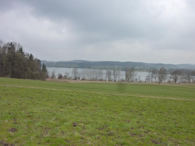 Foto: Manfred Karl / Wandertour / Tachinger See Ostuferweg / 11.04.2013 21:29:59