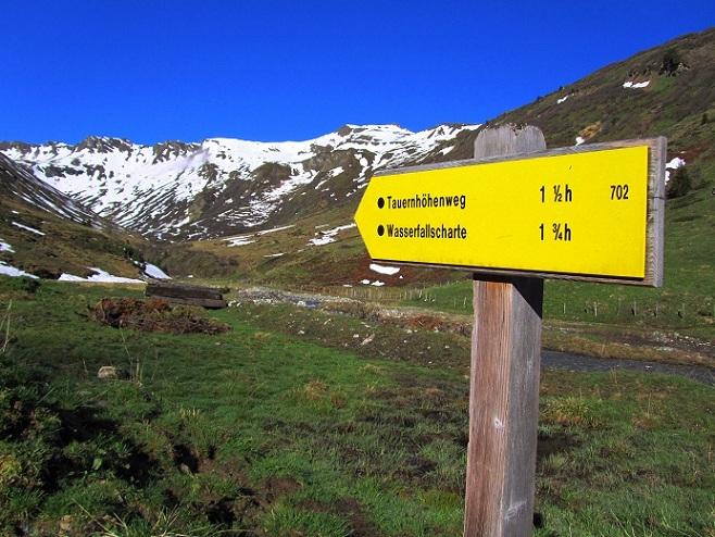 Foto: Andreas Koller / Ski Tour / Jägerspitze aus dem Riedingtal (2508m) / 31.05.2013 15:13:49