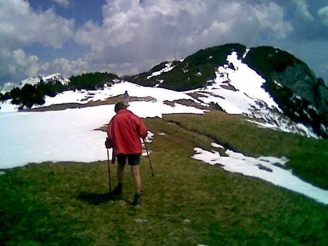 Foto: Wolfgang Lauschensky / Wandertour / Bärenkopf  1991m   über Weißenbachalm / am Gipfelaufbau / 16.06.2013 09:56:30