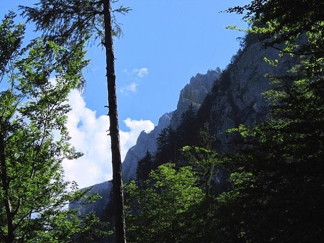 Foto: Andreas Koller / Klettersteigtour / Attersee Klettersteig Mahdlgupf (1261m) / 30.06.2013 16:01:56