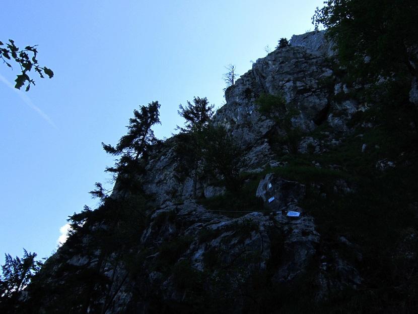 Foto: Andreas Koller / Klettersteigtour / Attersee Klettersteig Mahdlgupf (1261m) / Der schattige Einstieg / 30.06.2013 16:01:46