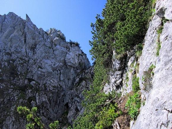 Foto: Andreas Koller / Klettersteigtour / Intersport Klettersteig Donnerkogel (2054m) / 12.07.2013 16:39:51