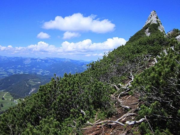 Foto: Andreas Koller / Klettersteigtour / Intersport Klettersteig Donnerkogel (2054m) / 12.07.2013 16:33:30