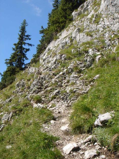Foto: Manfred Karl / Wandertour / Hohes Brett über Brettgabel / Immer wieder trifft man auf kurze felsige Passagen / 04.10.2013 21:17:22