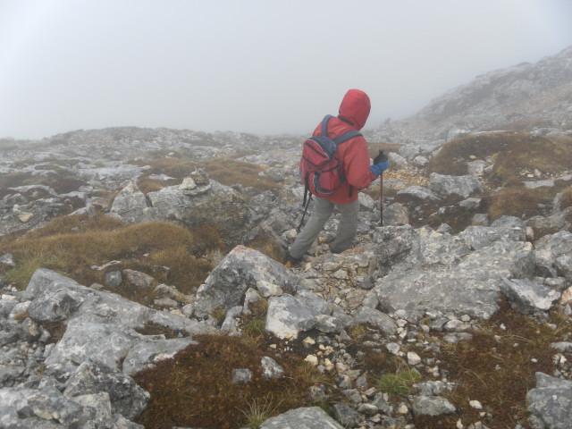 Foto: Wolfgang Lauschensky / Wandertour / Kleine Gaisl oder Croda Rossa Piccola von Pederü / steile Nordflanke der Roten Wand / 12.10.2013 13:38:58