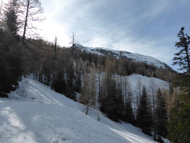 Foto: Manfred Karl / Skitour / Seeköpfl von Wald im Zederhaustal / 19.03.2014 19:53:44