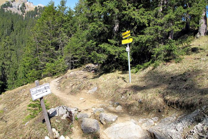 Foto: vince 51 / Wandertour / Von Grän auf das Brentenjoch / Hier gehts zur Bad Kissinger Hütte. Wir gehen auf dem Förstweg nach rechts. / 14.04.2014 21:51:33