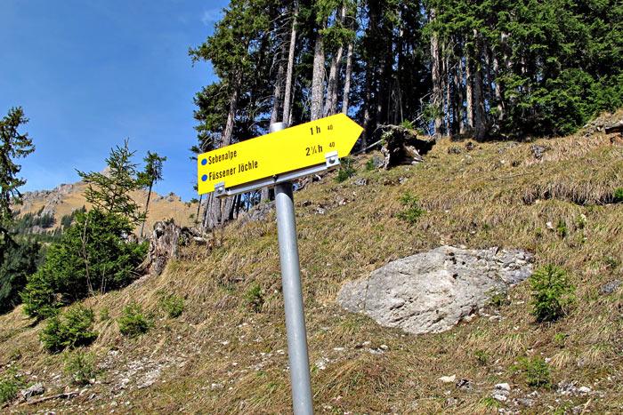 Foto: vince 51 / Wandertour / Von Grän auf das Brentenjoch / Abzweig vom Forst(Fahr)weg / 14.04.2014 21:49:39