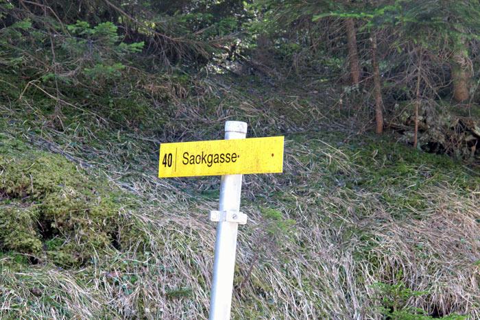 Foto: vince 51 / Wandertour / Von Grän auf das Brentenjoch / Schild bei der Überquerug des Forstweges (Gültig für den Forstweg) / 14.04.2014 21:47:52