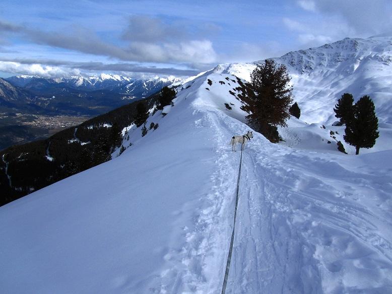 Foto: Andreas Koller / Schneeschuhtour / Panoramaloge Faltegartenkögele (2184m) / Abstieg vom Faltegartenköpfl / 03.05.2014 01:01:04