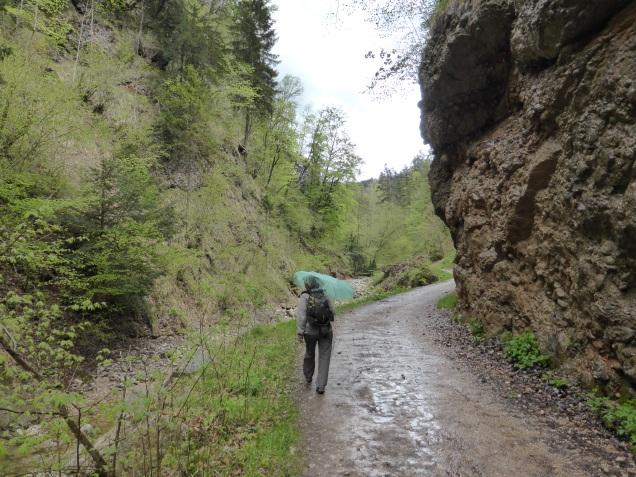 Foto: Manfred Karl / Wandertour / Durch die Glasenbachklamm auf den Rauchenbühel / Spaziergang durch die Klamm / 19.05.2014 19:53:16