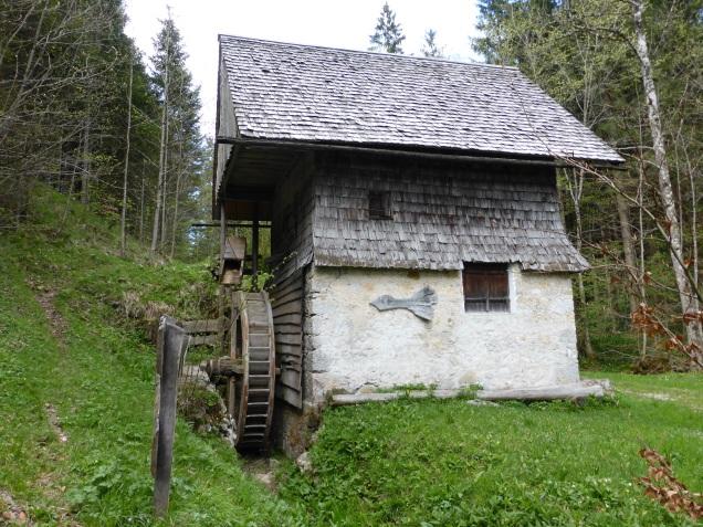 Foto: Manfred Karl / Wandertour / Durch die Glasenbachklamm auf den Rauchenbühel / Hiasnbauer Mühle / 19.05.2014 19:51:17