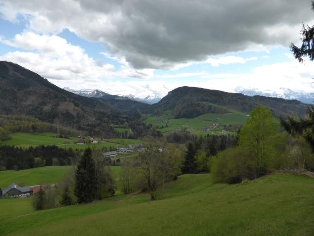 Foto: Manfred Karl / Wandertour / Durch die Glasenbachklamm auf den Rauchenbühel / 19.05.2014 19:50:51