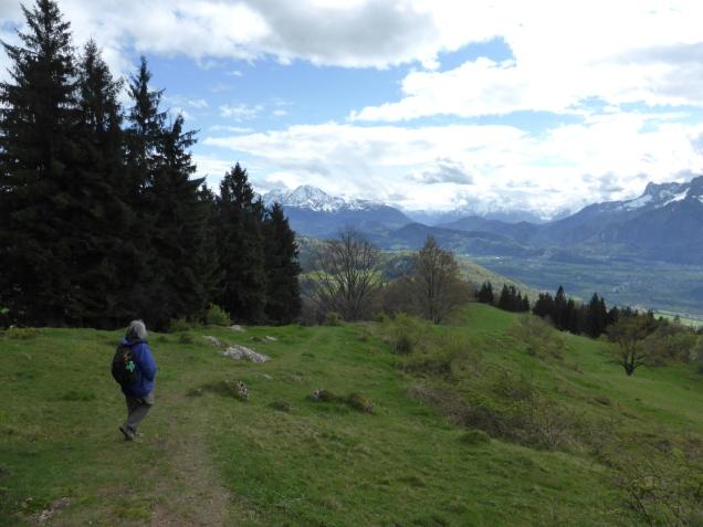 Foto: Manfred Karl / Wandertour / Durch die Glasenbachklamm auf den Rauchenbühel / 19.05.2014 19:48:36