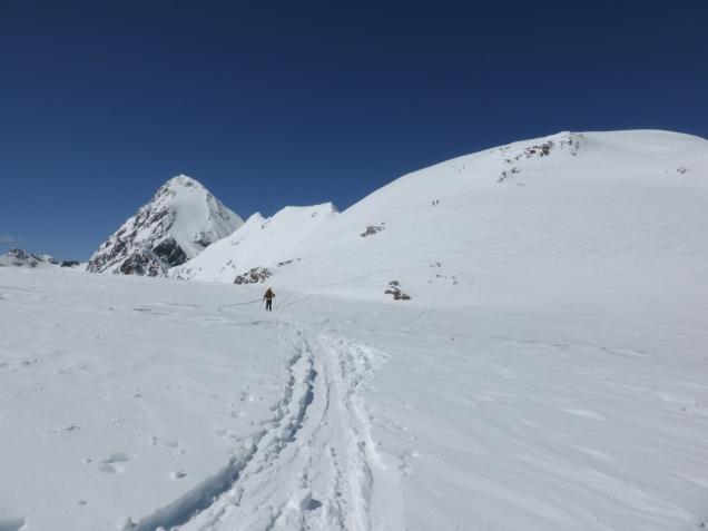 Foto: Manfred Karl / Skitour / Monte Cevedale von Sulden / 11.06.2014 19:50:16